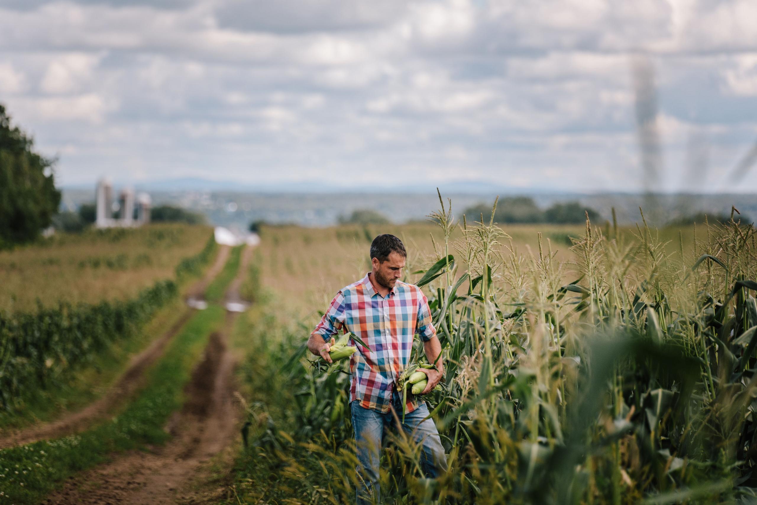 bio exposeimage crop
